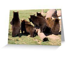 Bear cub behinds Greeting Card