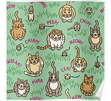 Cats and Critters Poster