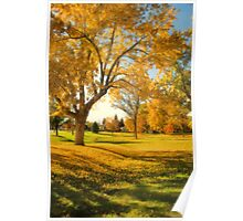 A Late Autumn Afternoon Poster