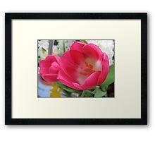Spring Sprite Tulips Framed Print