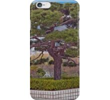 Stately Pine iPhone Case/Skin