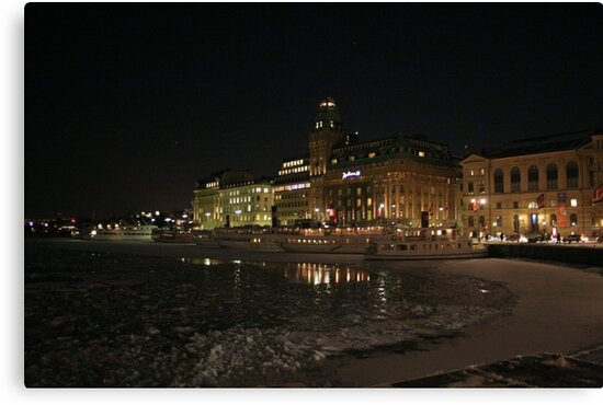 Palace at night (Stockholm, Sweden) by Antanas