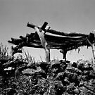 Nostalgia of a Lost Farmer by Biren Brahmbhatt