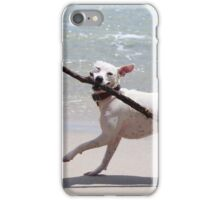 Dogs on the beach iPhone Case/Skin
