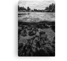 UNA river Canvas Print