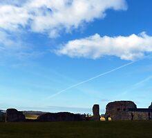 Denbigh Castle, panorama by artfulvistas
