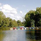 Boats on Markeaton Lake by Rod Johnson