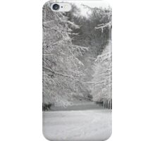 Wintersday  iPhone Case/Skin