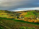 Lower Dart Valley by phil hemsley