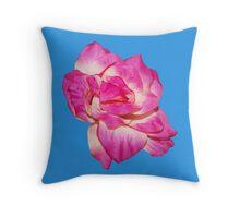 Flower - beautiful pink gift Throw Pillow