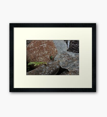 So Small inThe World Framed Print
