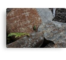So Small inThe World Canvas Print
