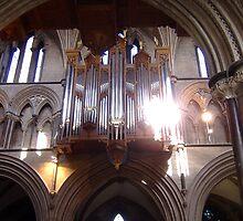 Worcester Cathedral, Organ Pipes. by artfulvistas