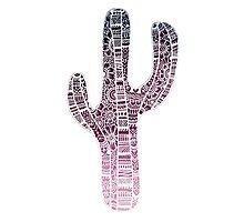 Cactus: White/Purple Photographic Print