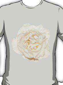 White tender rose T-Shirt