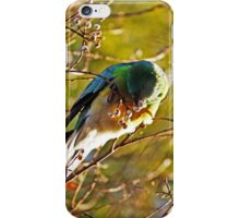 Australian Parrot iPhone Case/Skin