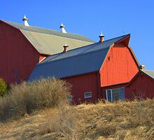 The Red Barn Above by Larry Llewellyn