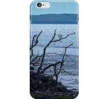 Riverside Driftwood iPhone Case/Skin