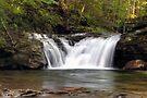 Lower Twin Falls on Heberly Run by Gene Walls