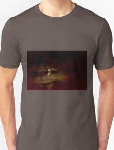 Thinly Veiled Heavenly Body  T-Shirt