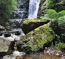 Mathinna Falls (Lower) by Robin Young