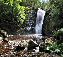 Lower Mathinna Falls  by Robin Young