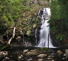Mathinna Falls (Upper) by Robin Young