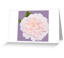 Cute pink flower Greeting Card