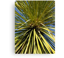 Green Spine Canvas Print