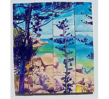 Vista Arthur Bay Photographic Print