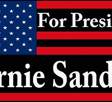 Bernie Sanders 2016 US Flag  by ozdilh