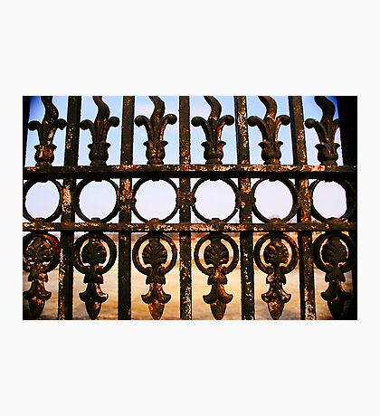 moldy gate Photographic Print