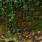 Stone Work,Stringers Creek Walhalla by Joe Mortelliti