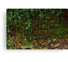 Stone Work,Stringers Creek Walhalla Canvas Print