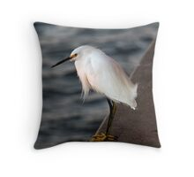 Little Sunset Surprise  Throw Pillow