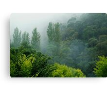 Weather Closes In, Walhalla, Gippsland Canvas Print