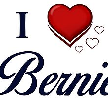 I Love Bernie by ozdilh