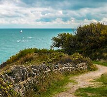 Durlston Hall Country Park View by ScenicViewPics