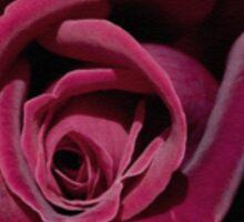 Velvet dark rose Sticker