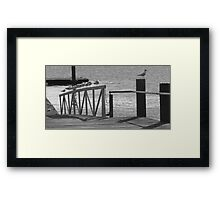Away From The Crowd! Framed Print