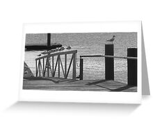 Away From The Crowd! Greeting Card