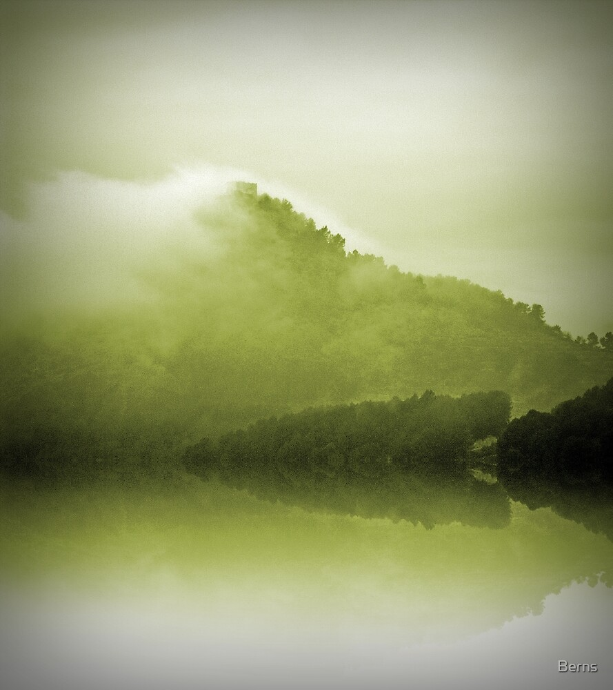 Green Mountain Mist by Berns