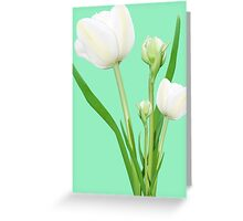 Bouquet of white tulips Greeting Card