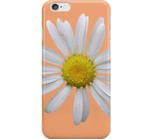 Wonderful white daisy iPhone Case/Skin