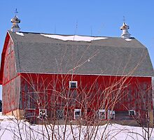 red barn in snow by Lynne Prestebak
