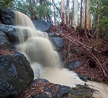 Yarran Dheran Falls by Travis Easton