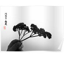 Parsley Bonsai Poster