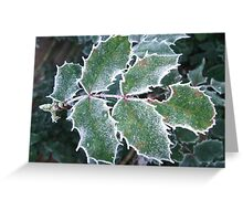 Frosted Spikes Greeting Card