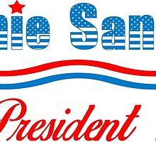 Bernie Sanders For President 2016 by ozdilh