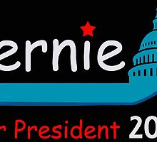 Bernie for President 2016 by ozdilh